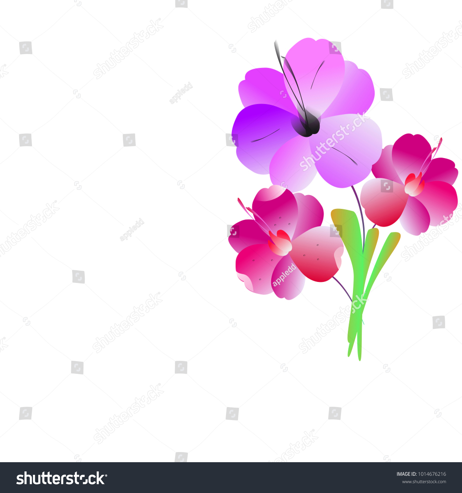 Beautiful Color Flowers Isolated On A White Ez Canvas