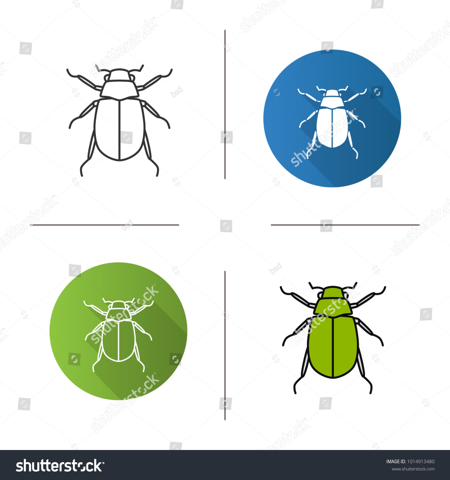 european chafer icon  flat design, linear and color styles  melolontha  june  bug