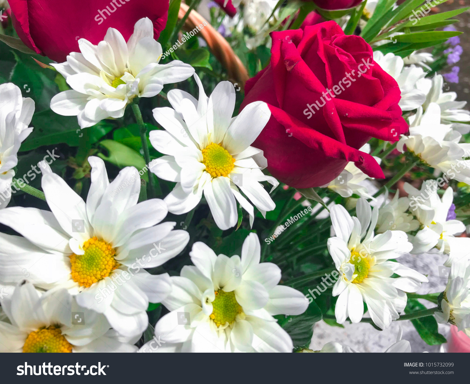 Concept Flowers Valentine Day Background Message Stock Photo ...