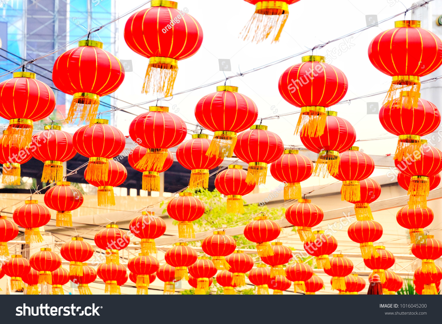 row red chinese lanterns hanging on stock photo edit now