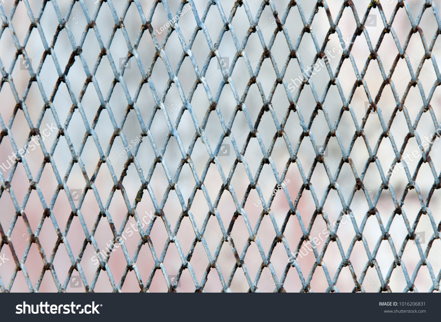 Wire Net Steel Fence Texture Old Stock Photo (Edit Now) 1016206831 ...