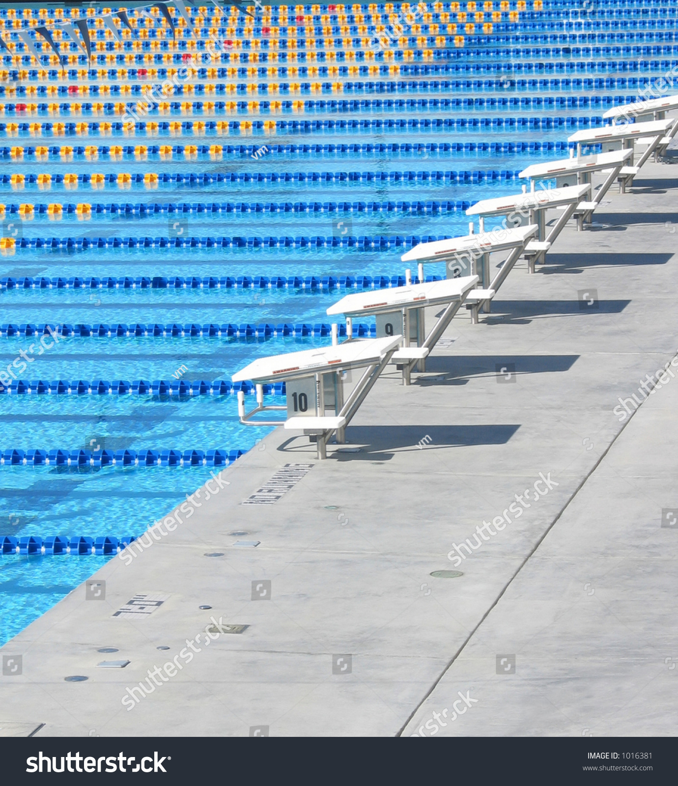 Olympic-Sized Swimming Pool Stock Photo 1016381 : Shutterstock