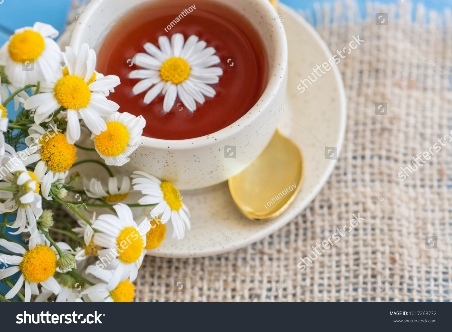 Cup Herbal Chamomile Tea Fresh Daisy Stock Photo Edit Now