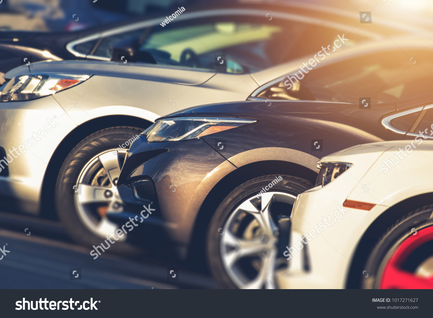 Pre Owned Vehicles For Sale in Stock. Used Cars on Dealership Lot. Automotive Industry. #1017271627