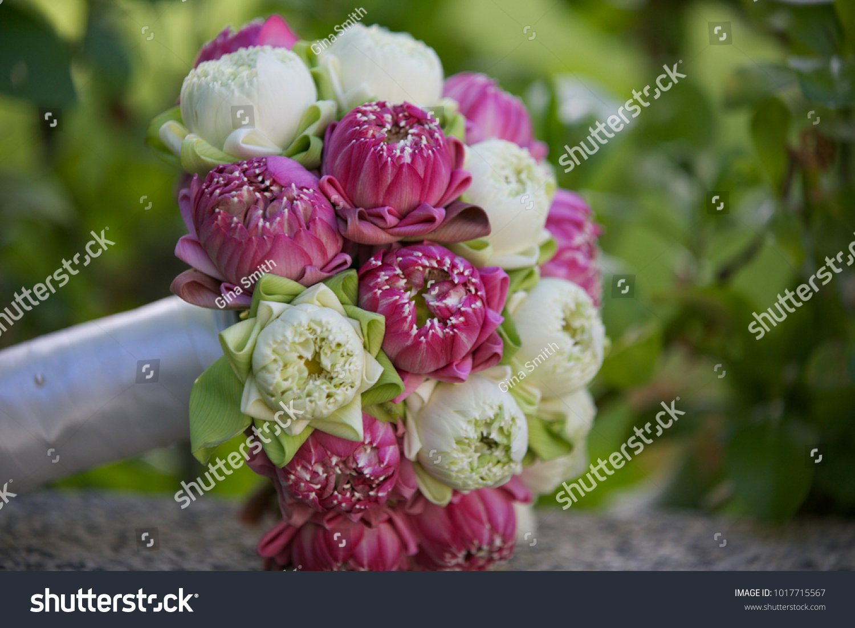 Beautiful Wedding Bouquet Pink White Lotus Stock Photo Royalty Free