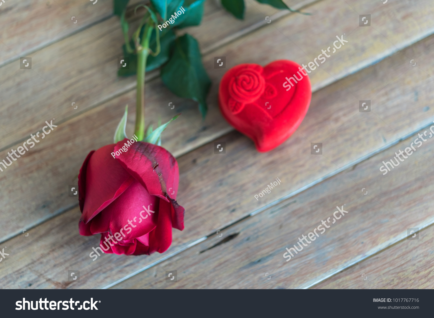 Red rose flower nature beautiful flowers stock photo edit now red rose flower nature beautiful flowers from garden and ring red box heart shape design for izmirmasajfo