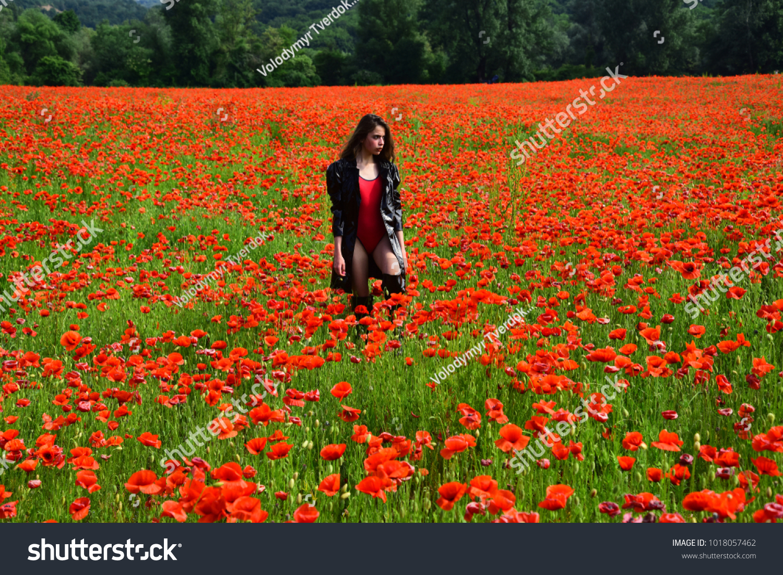 Opium Poppy Botanical Plant Ecology Woman Stock Photo Edit Now