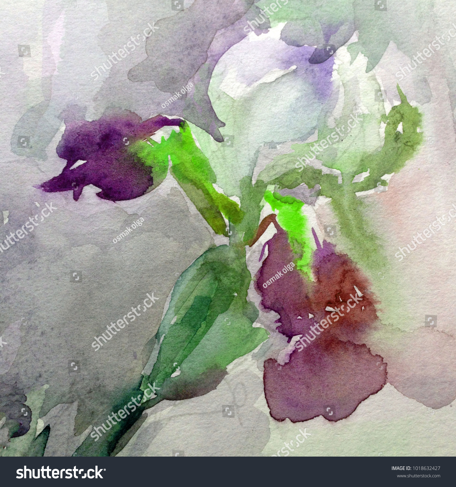 Watercolor art background floral exotic iris stock illustration watercolor art background floral exotic iris stock illustration 1018632427 shutterstock izmirmasajfo