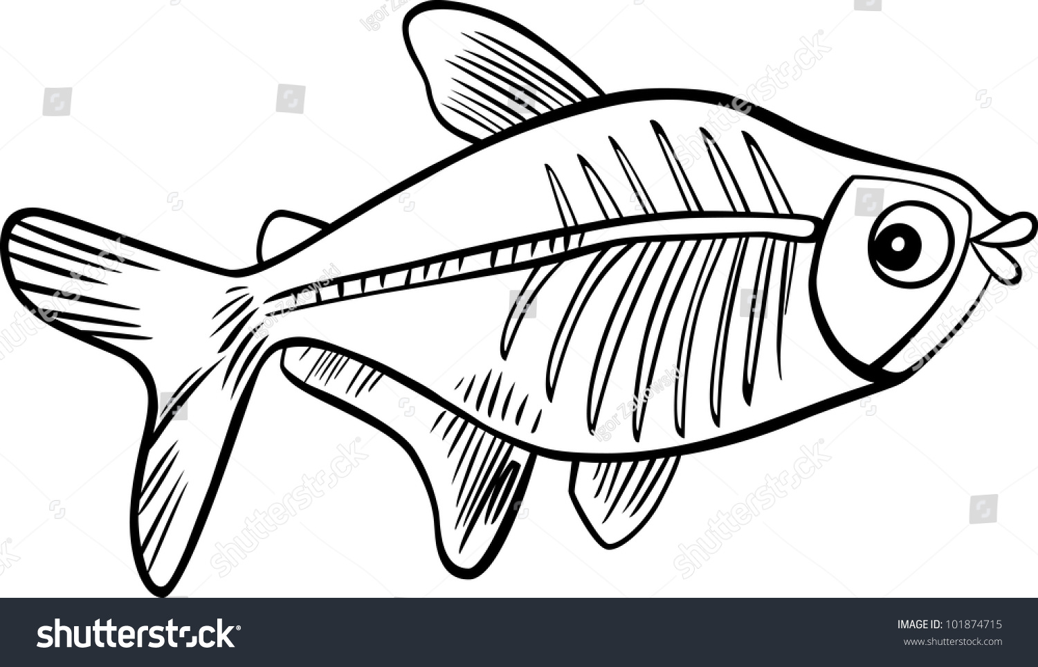Cartoon Illustration Of X Ray Fish For Coloring Book