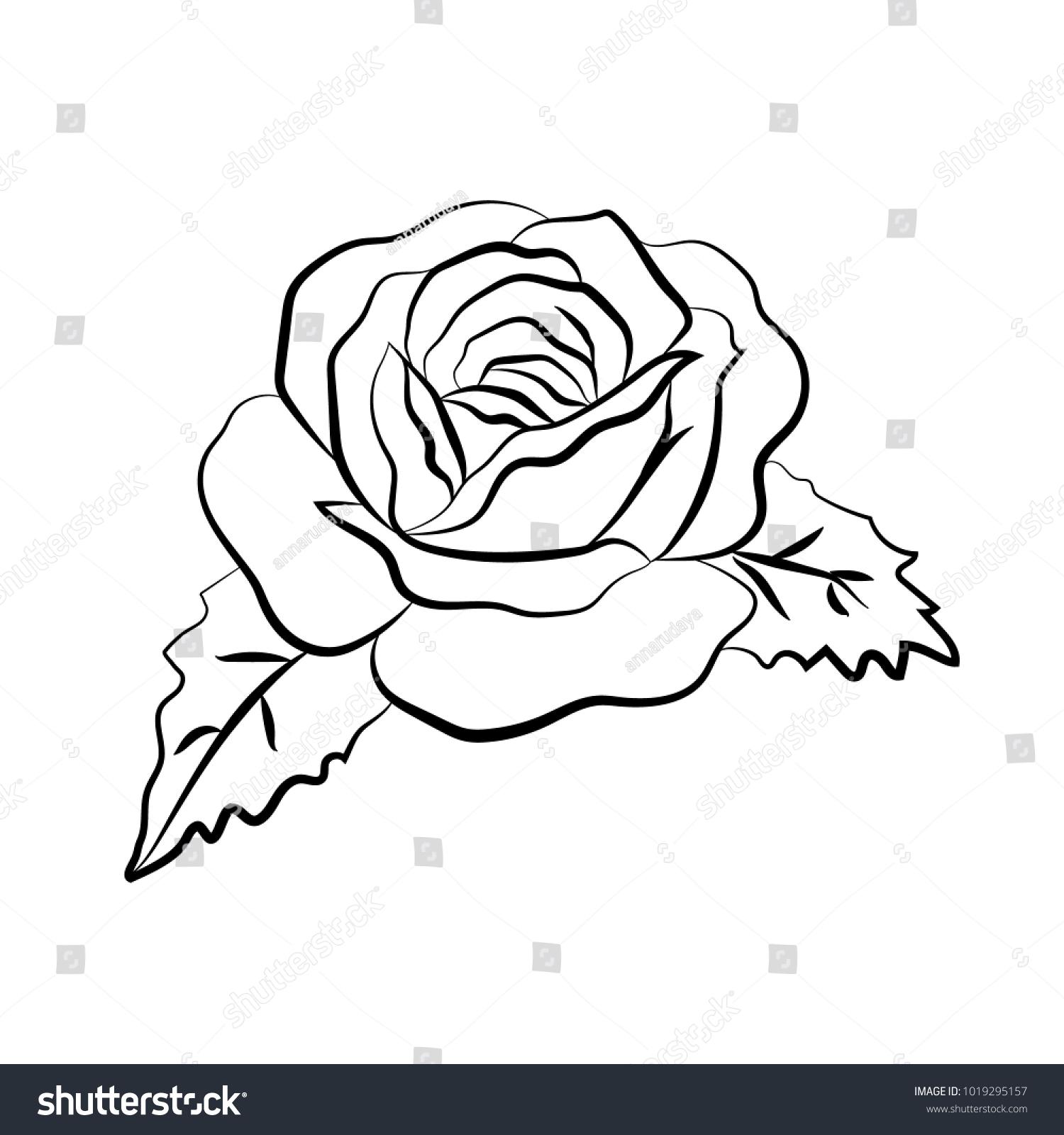 Rose Vector Illustration Rose Outline Doodle Stock Vector Royalty