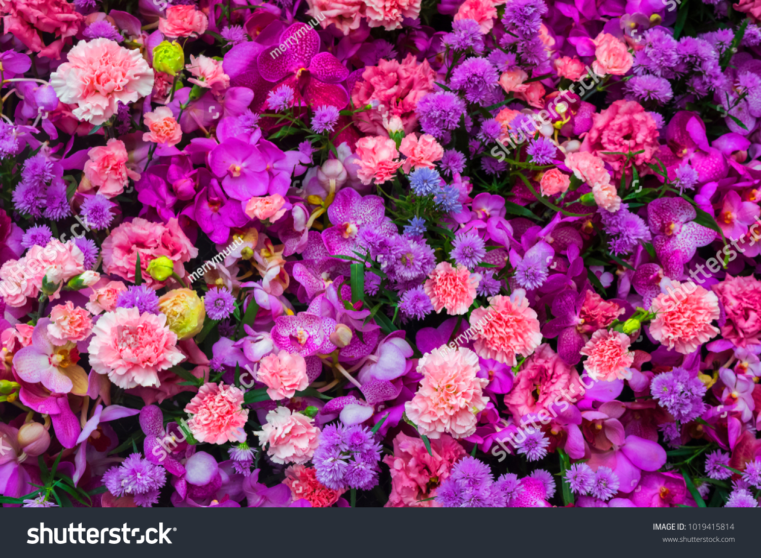 Colorful flower bouquet background made pink stock photo edit now colorful flower bouquet background made of pink and purple carnation and orchid flowers wall for background izmirmasajfo