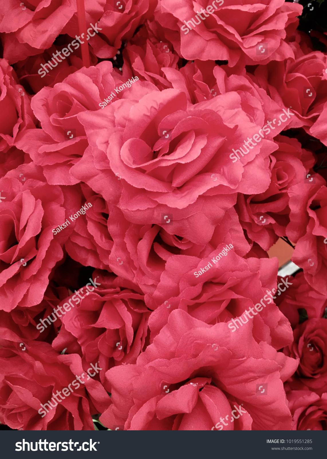 Red Roses Ez Canvas