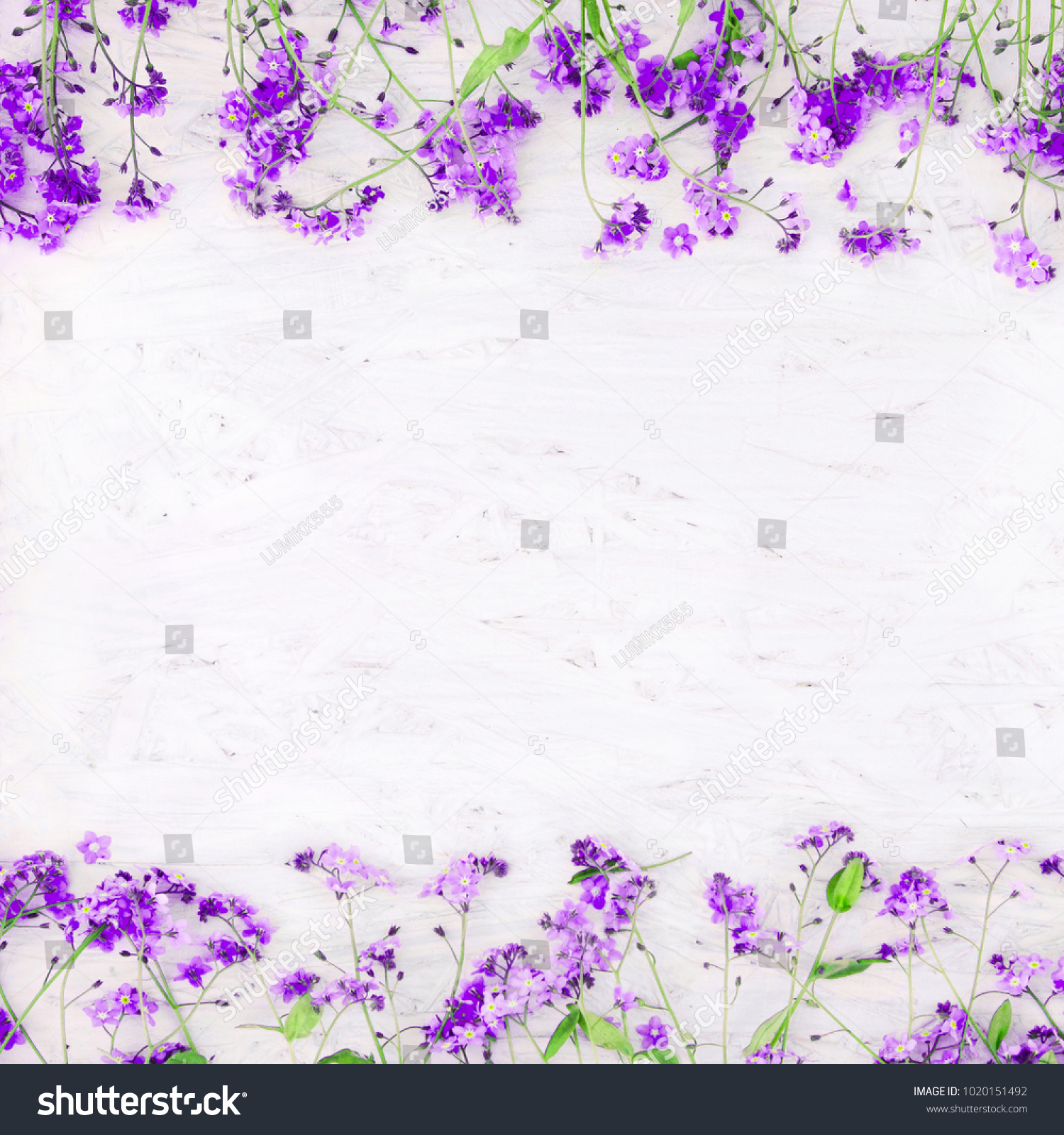 Beautiful Nature Spring Flower Background Copy Stock Photo Edit Now