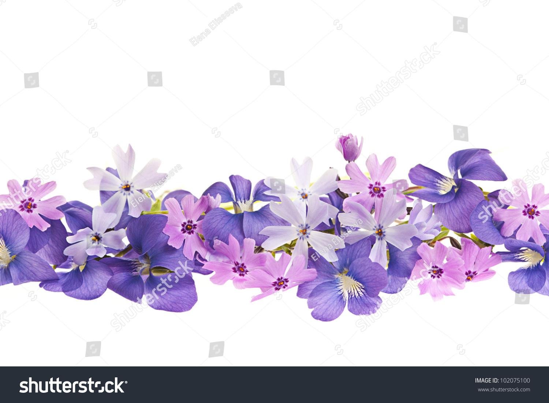Arrangement Purple Violets Moss Pink Flowers Stock Photo ...