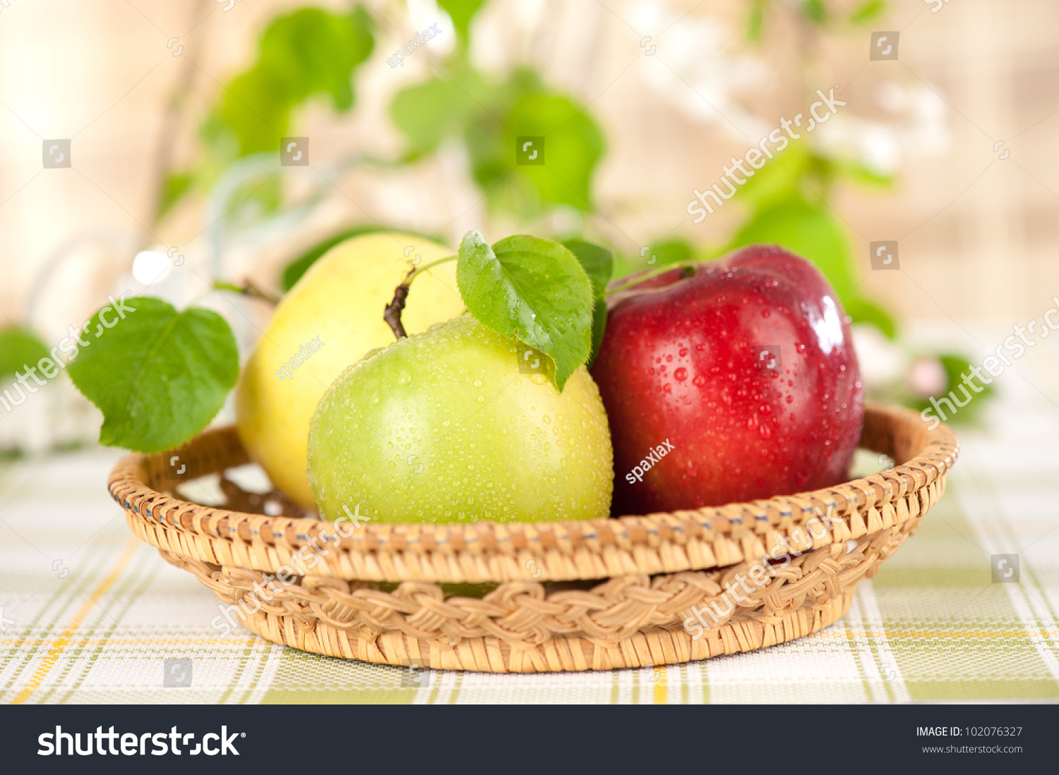 green and red apples in basket. juicy green and red apples in the basket r
