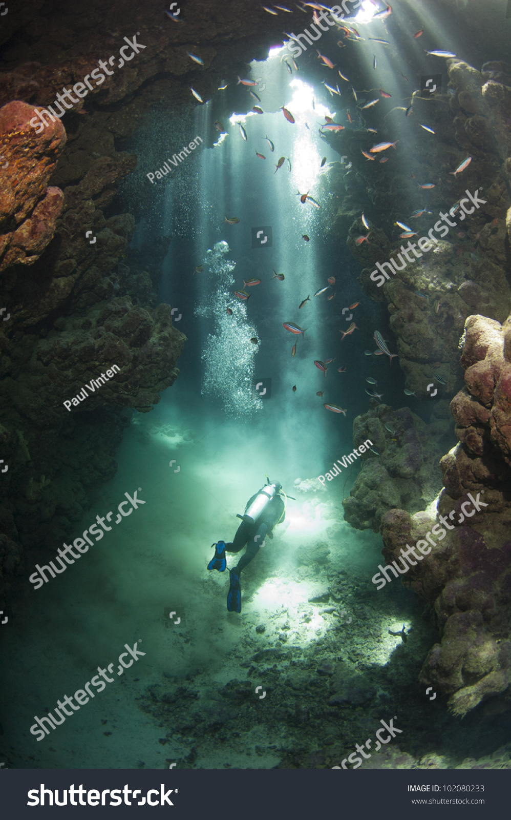 Scuba diver exploring an underwater cave framed in beams of sunlight #102080233