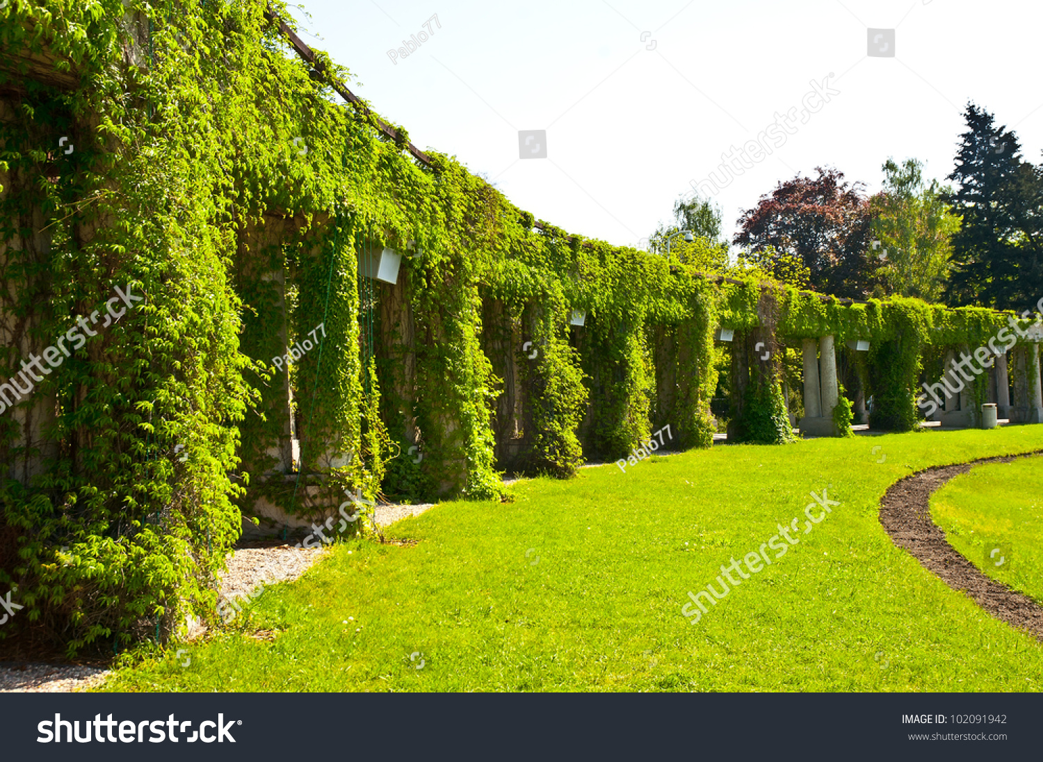 Garden Archway Bloom Pergola Wroclaw Poland Stock Photo 102091942