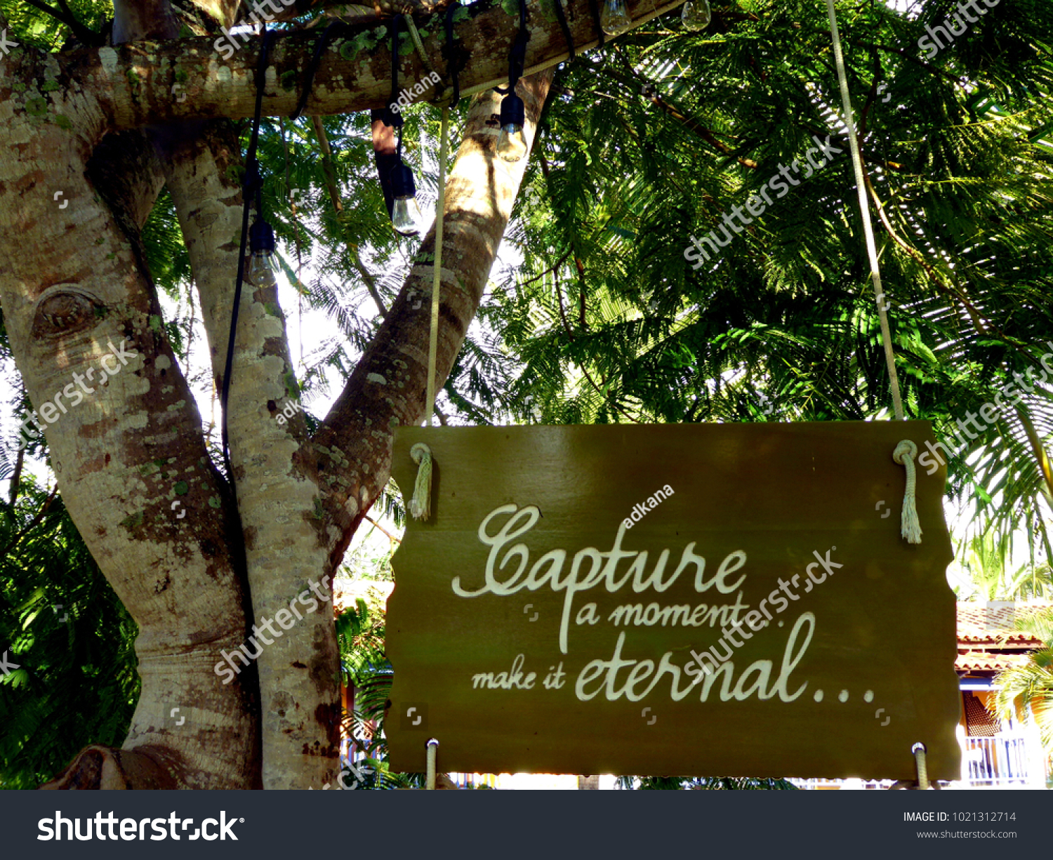 Capture a moment wooden sigh hanging in the trees with text make it eternal #1021312714
