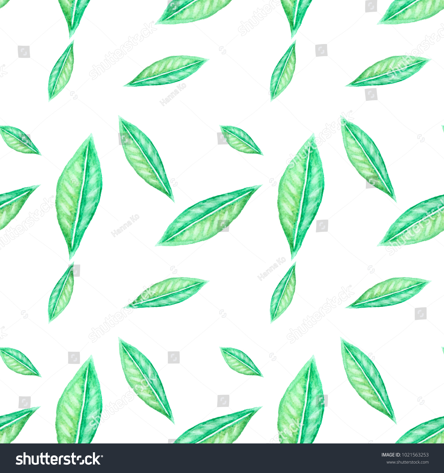 Pattern Painted Watercolor Green Multicolored Leaves Stock ...