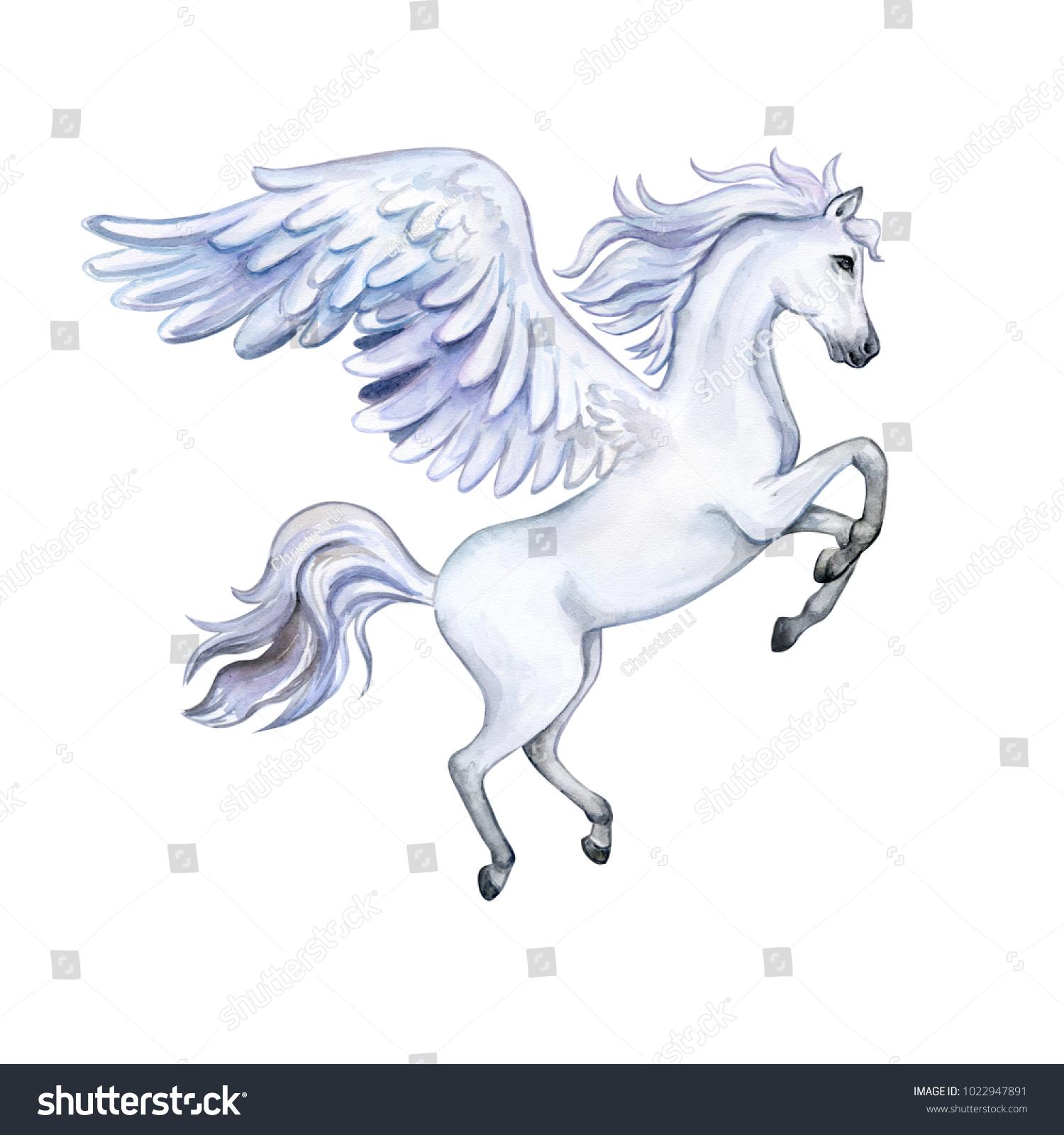 Pegasus Wings Isolated On White Background Stock Illustration 1022947891