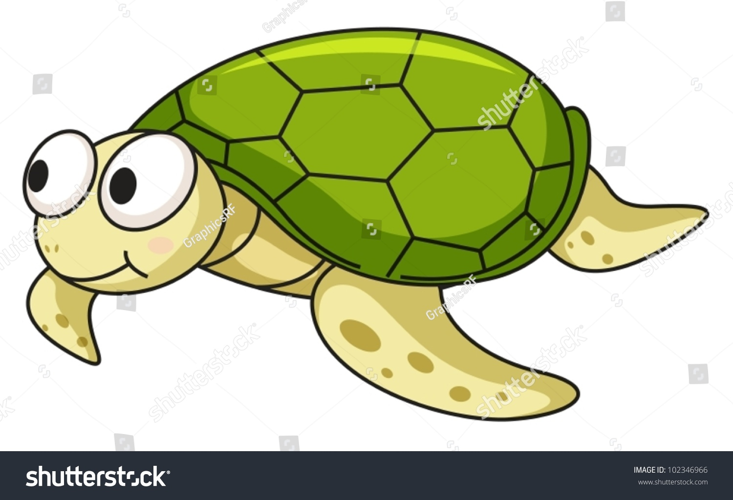 Stock Vector Illustration Of An Isolated Turtle