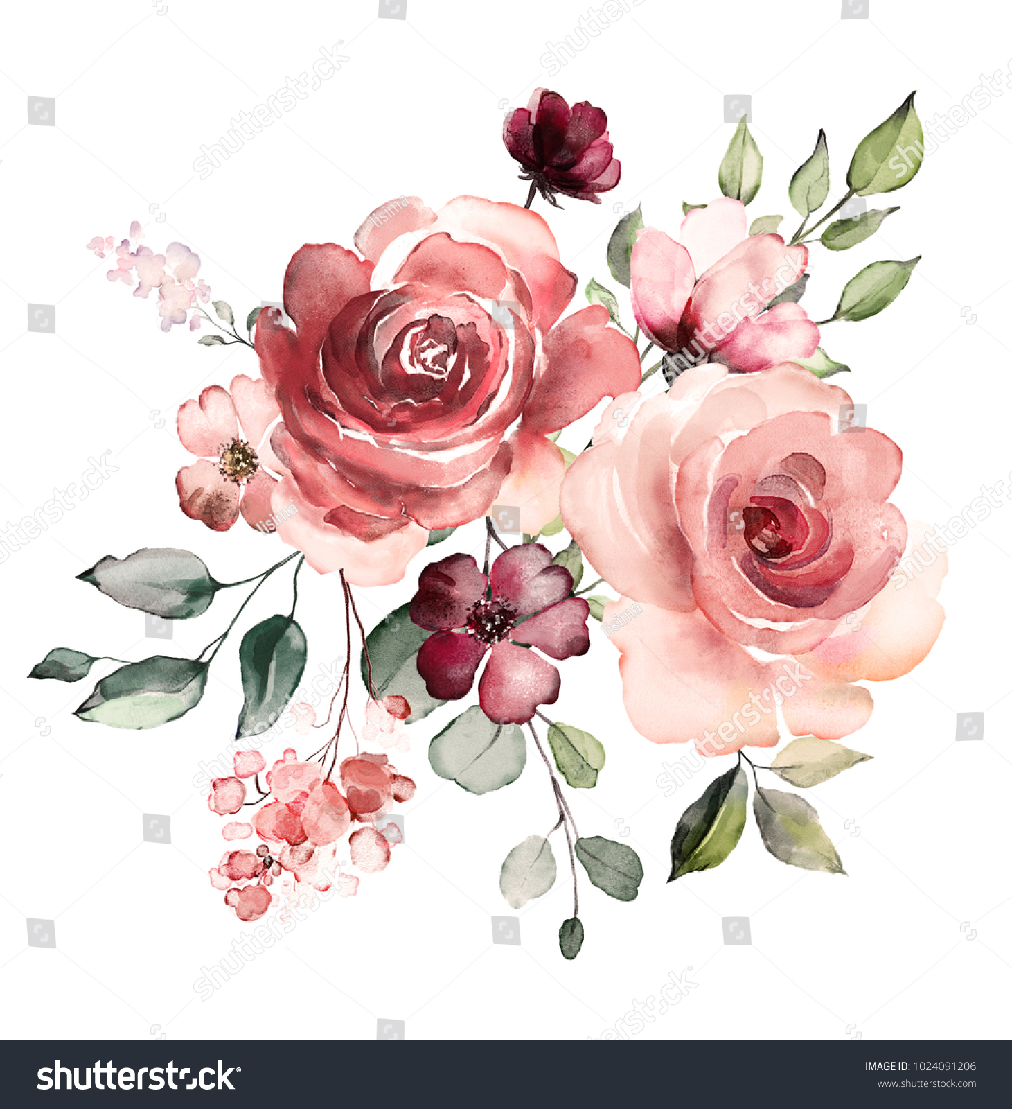 decorative watercolor flowers. floral illustration, Leaf and buds ...
