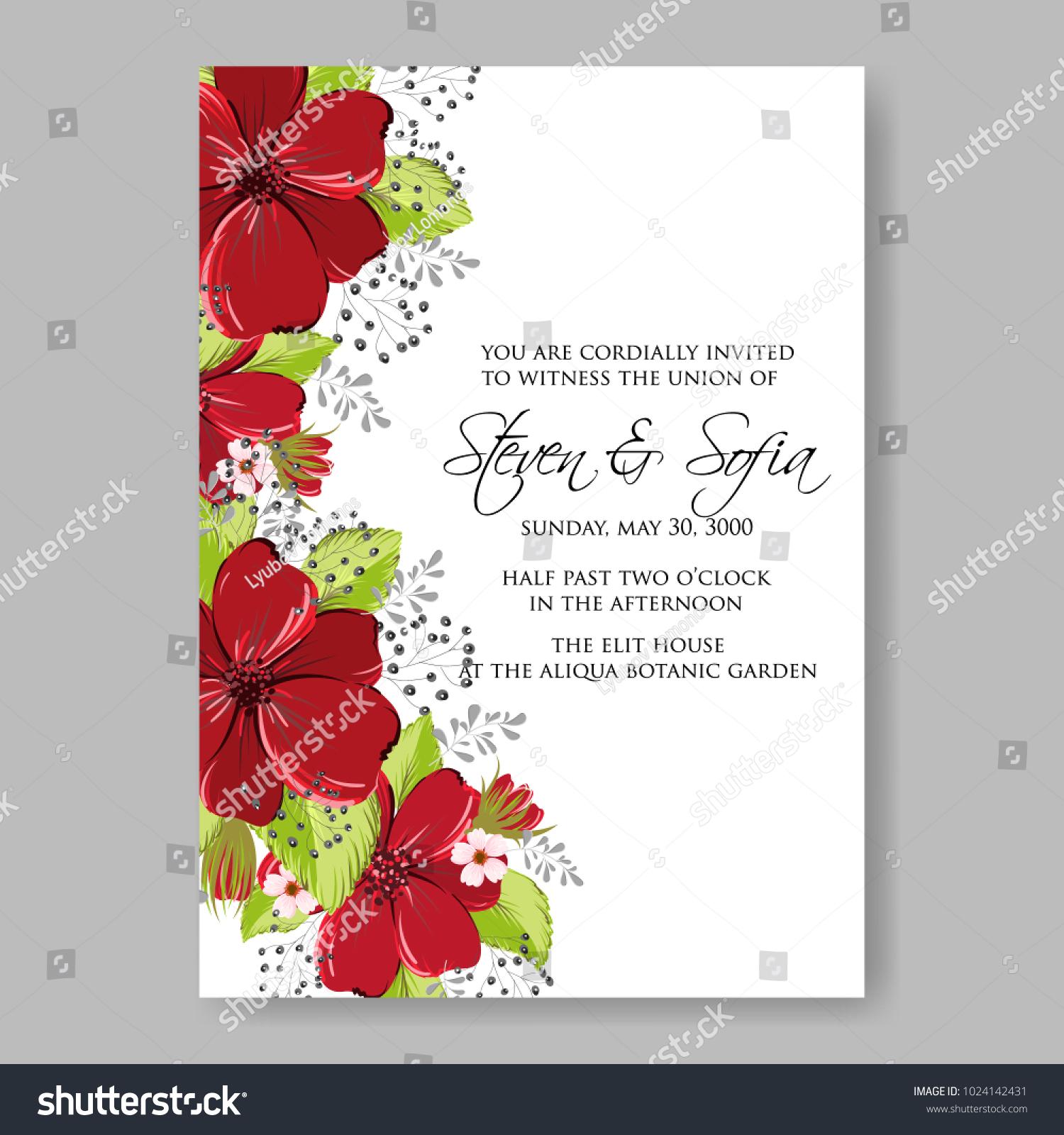 Spring Floral Anemone Vector Collection Clip Stock Vector (Royalty ...
