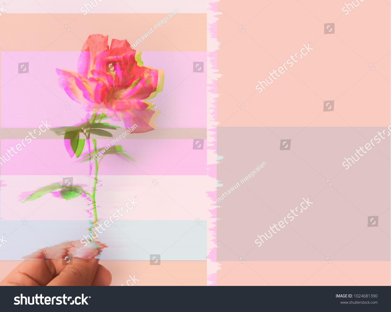 Cyber Rose Floral Backgrounddigital Glitch Design Stock Photo
