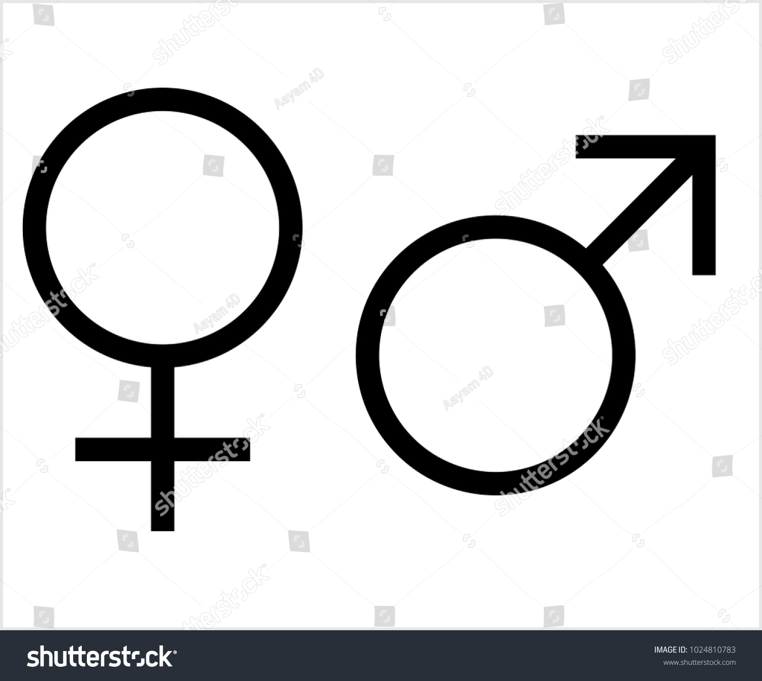 Gender Symbol Icon Male Female Biological Stock Vector Royalty Free
