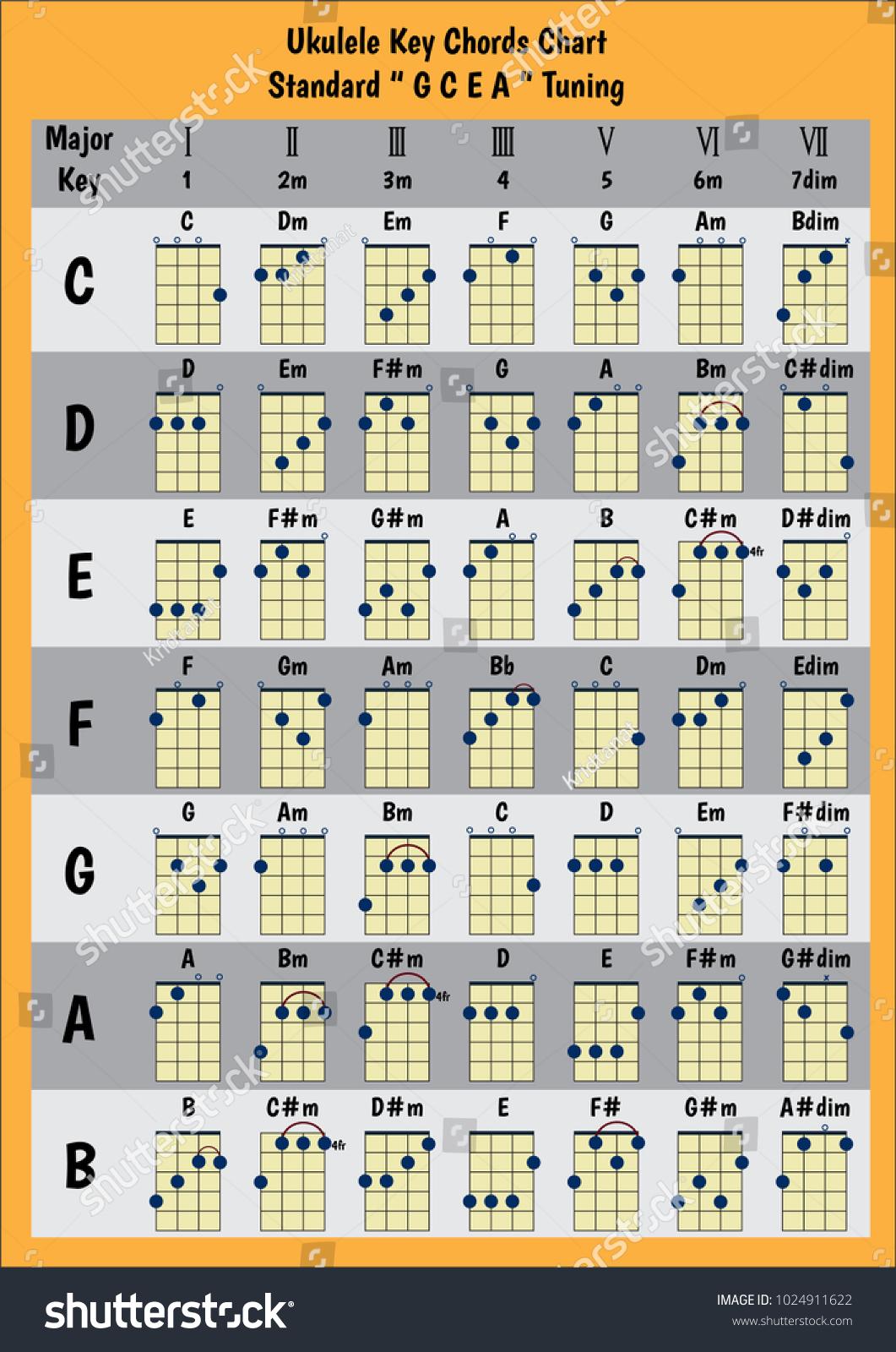 Ukulele Chord Chart Standard Tuning Stock Vector Royalty Diagram Chords A B C D E F G Basic For Beginner Progression
