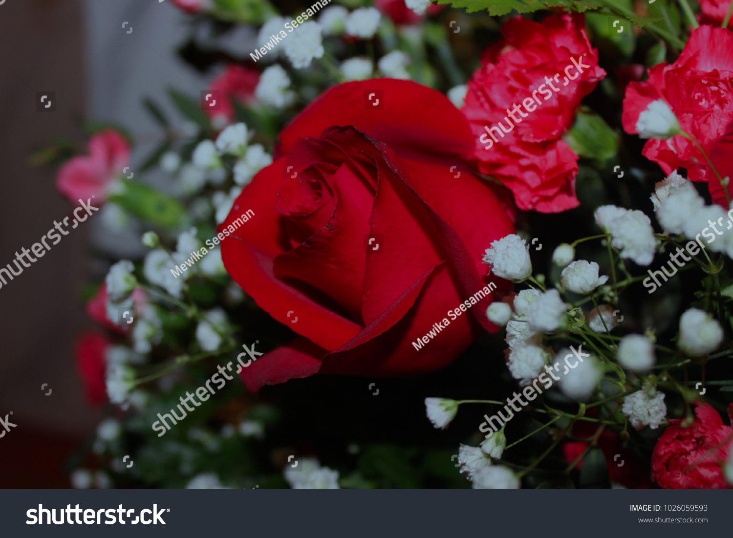 Red Roses Middle White Flowers On Stock Photo Royalty Free