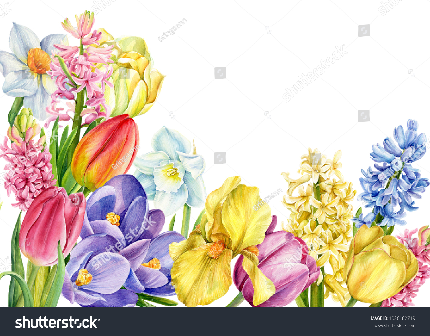 Bouquet Spring Flowers Watercolor Illustration Botanical Stock ...