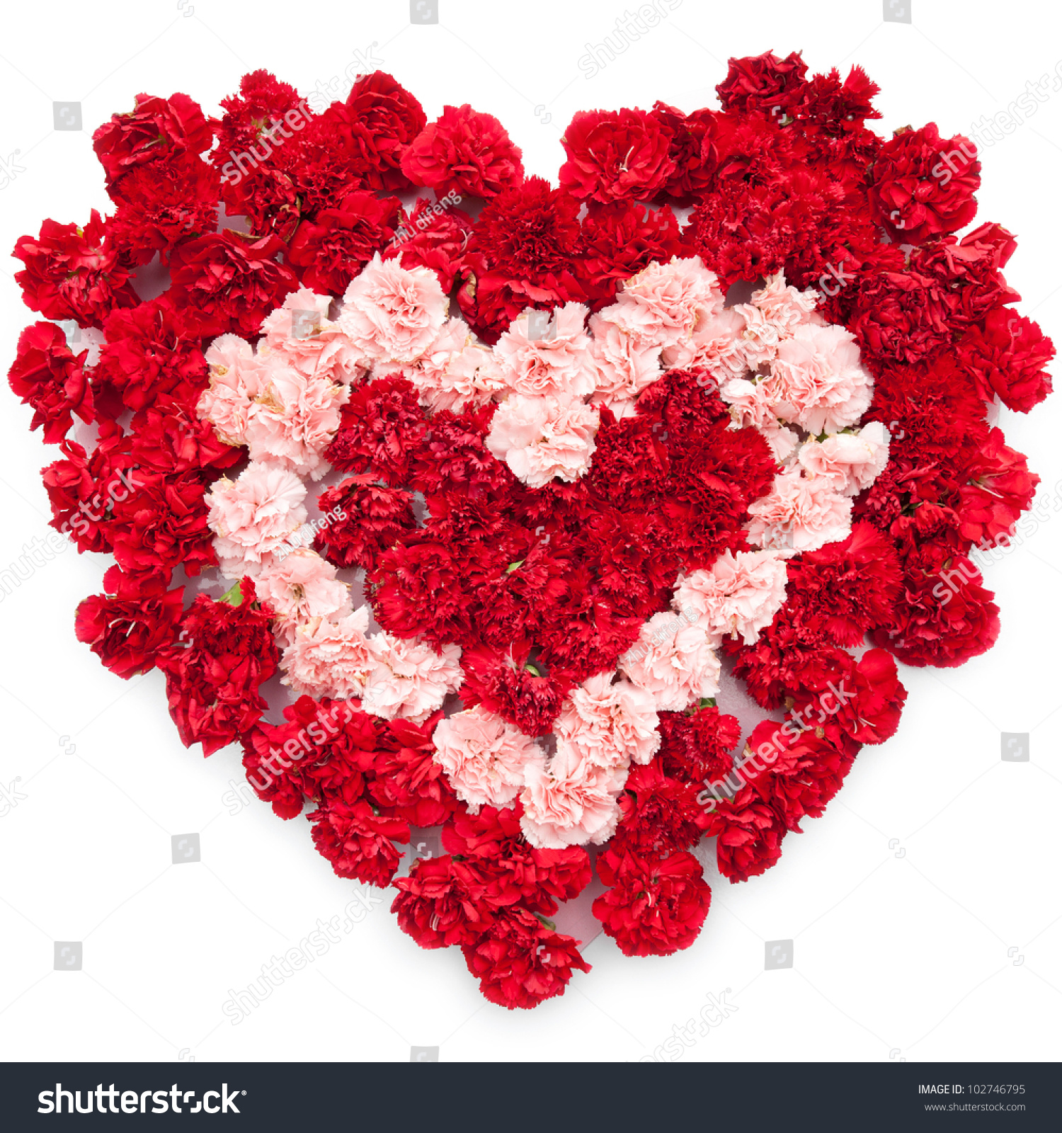 Love Heart Made Flowers White Background Stock Photo Royalty Free