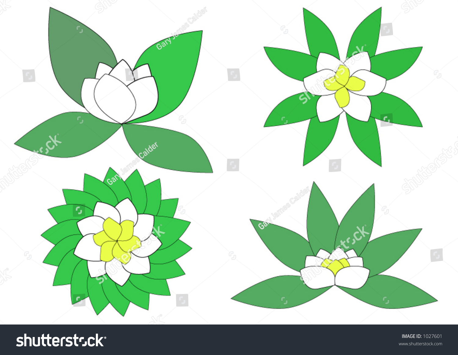 Lily flower designs stock vector royalty free 1027601 shutterstock lily flower designs izmirmasajfo