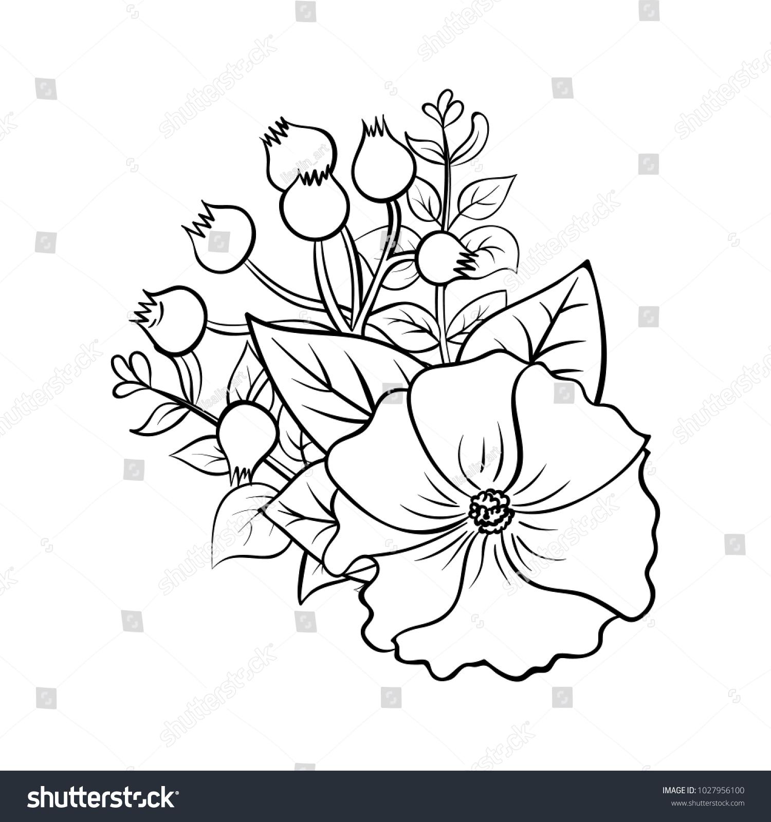 Vector Outline Illustration Flower Bouquet Black Stock Vector ...