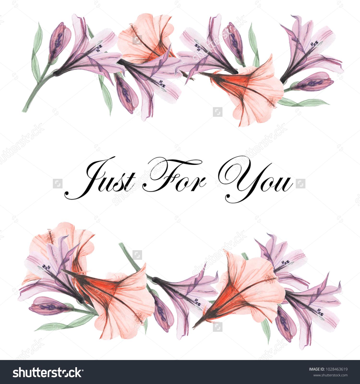 Greeting Card Floral Frames Beautiful Design Ez Canvas