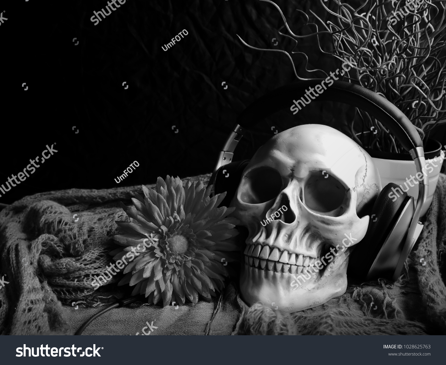 Close up photography black and white of skull life and headphones still life and