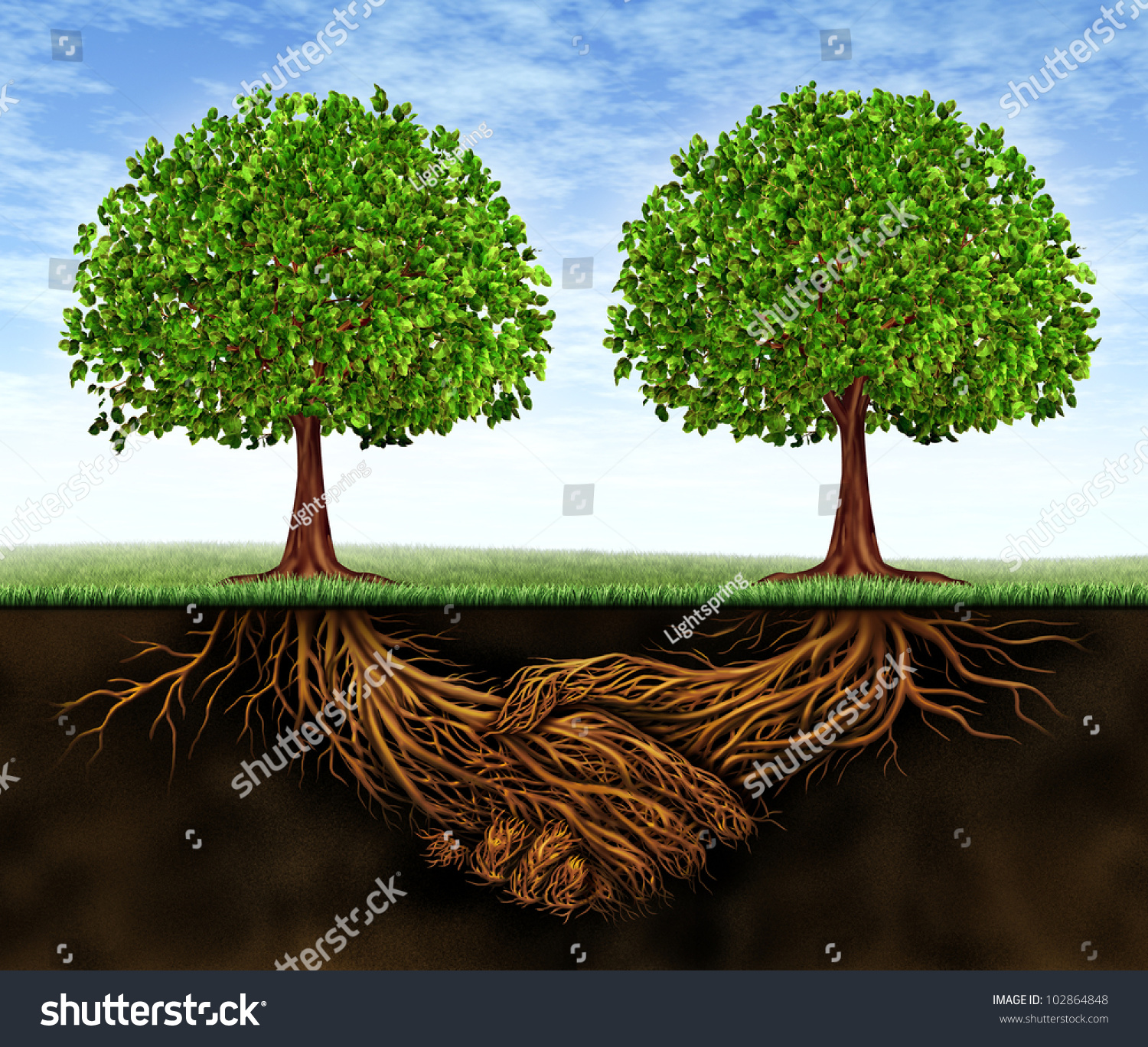 Finance Tree: Business Teamwork Growth Symbol Financial Cooperation