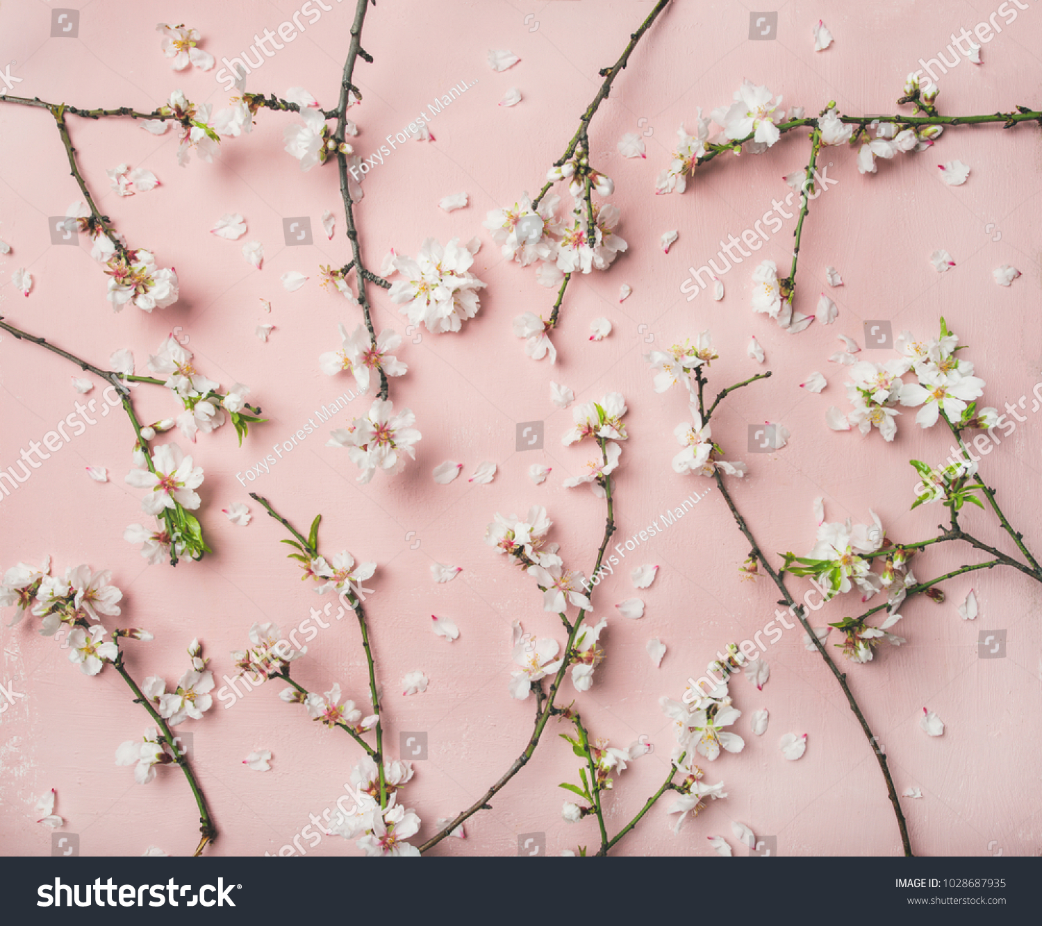 Spring Floral Background Texture Wallpaper Flatlay Stock Photo