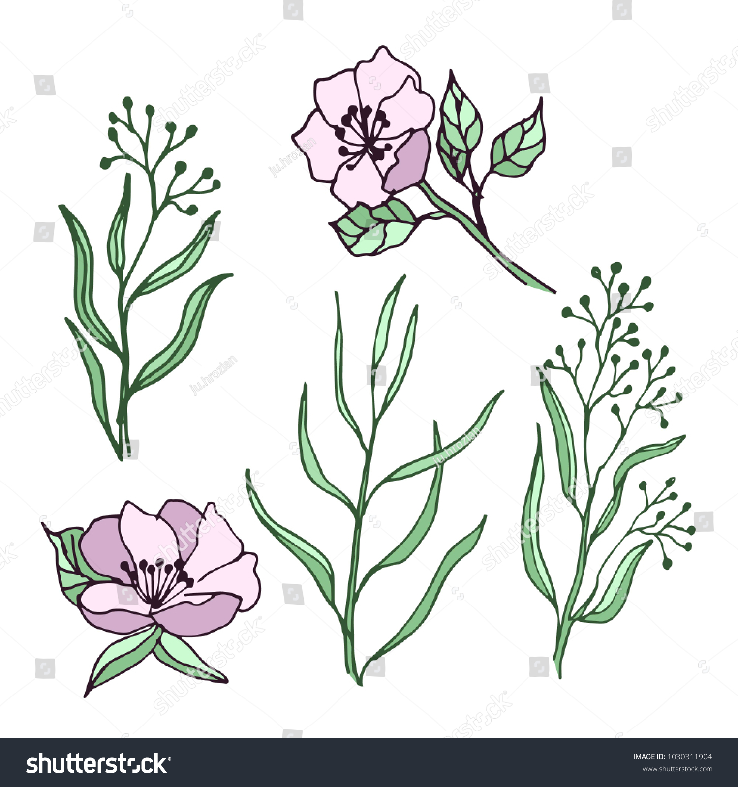 Spring Flowers Leaves Set Drawings Ideal Stock Vector Royalty Free