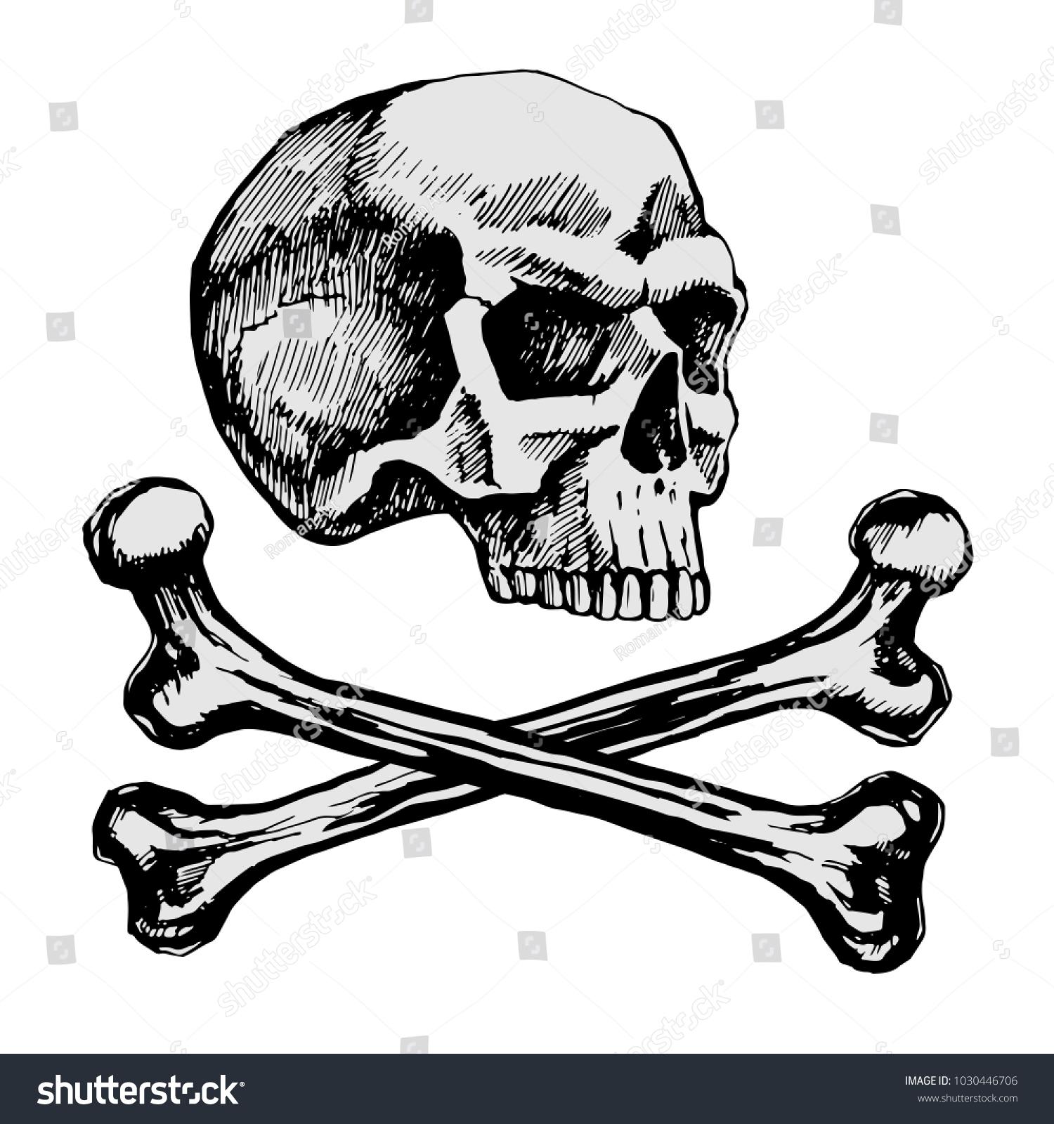 Skull Bones Sketch Vector Manual Symbol Stock Vector Royalty Free