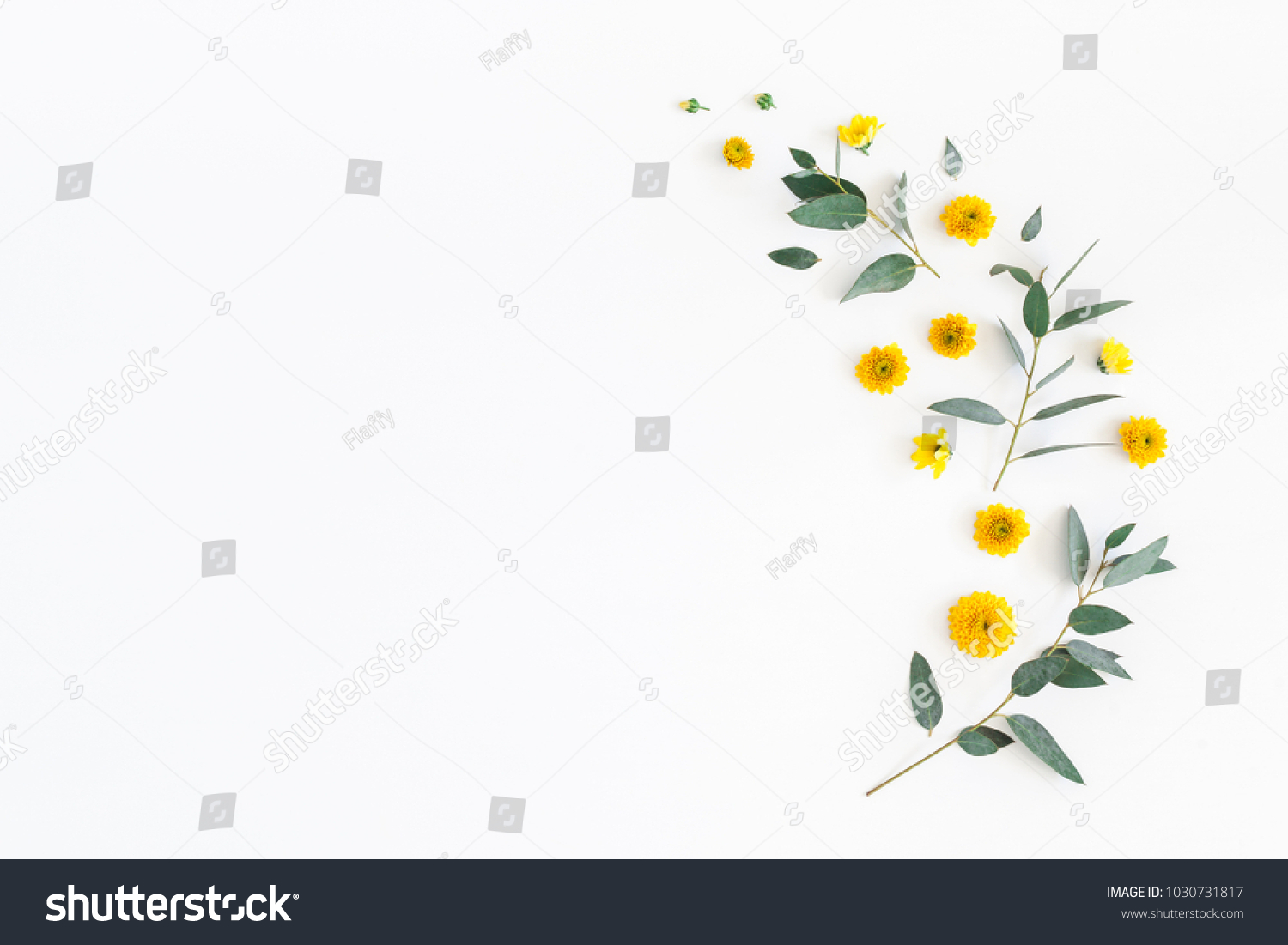 Flowers composition. Pattern made of yellow flowers and eucalyptus leaves on white background. Flat lay, top view, copy space #1030731817