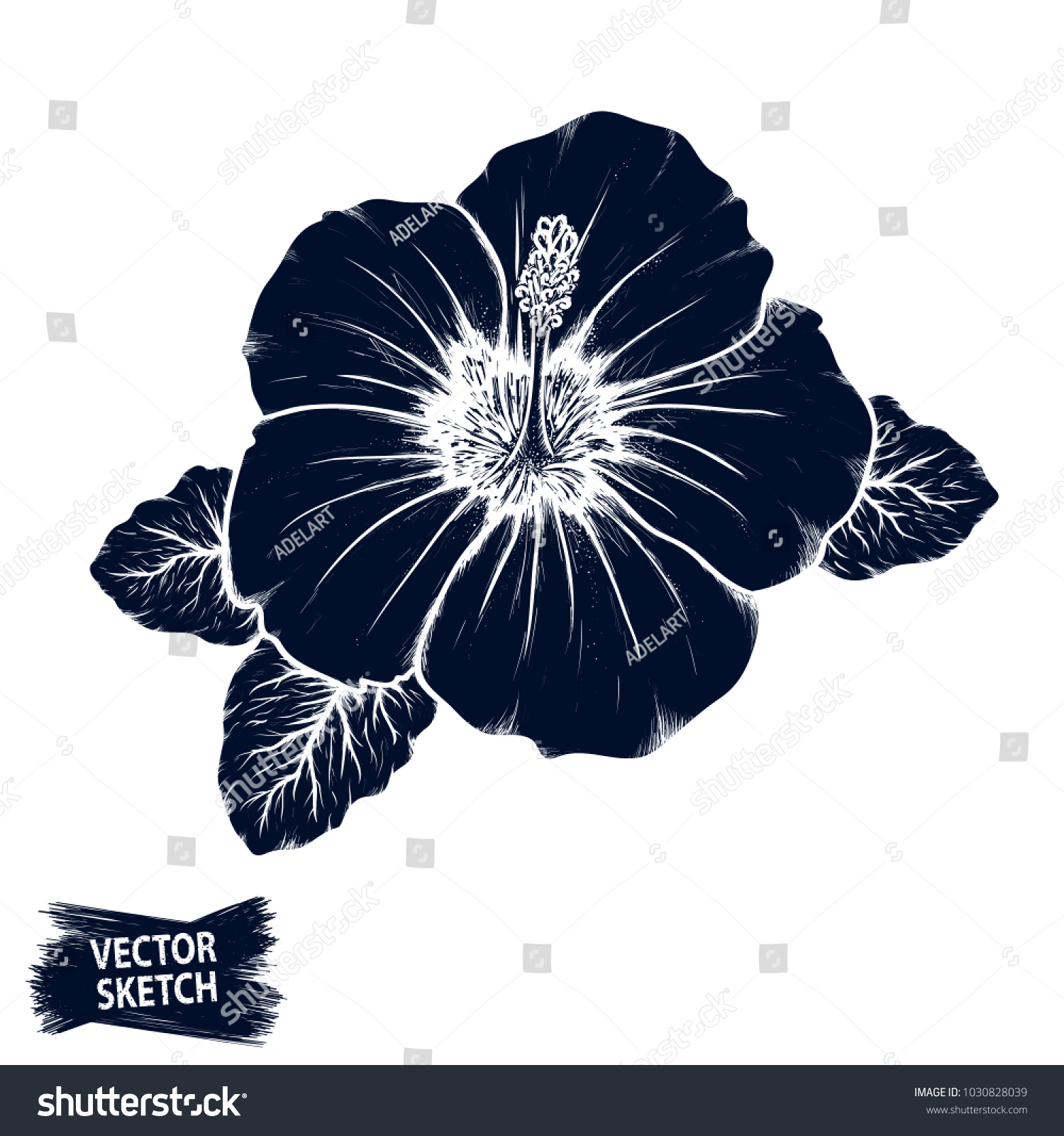 Hibiscus flower sketch tropical plant doodle stock vector 2018 hibiscus flower sketch tropical plant doodle floral scrawl scribble vector jungle nature izmirmasajfo