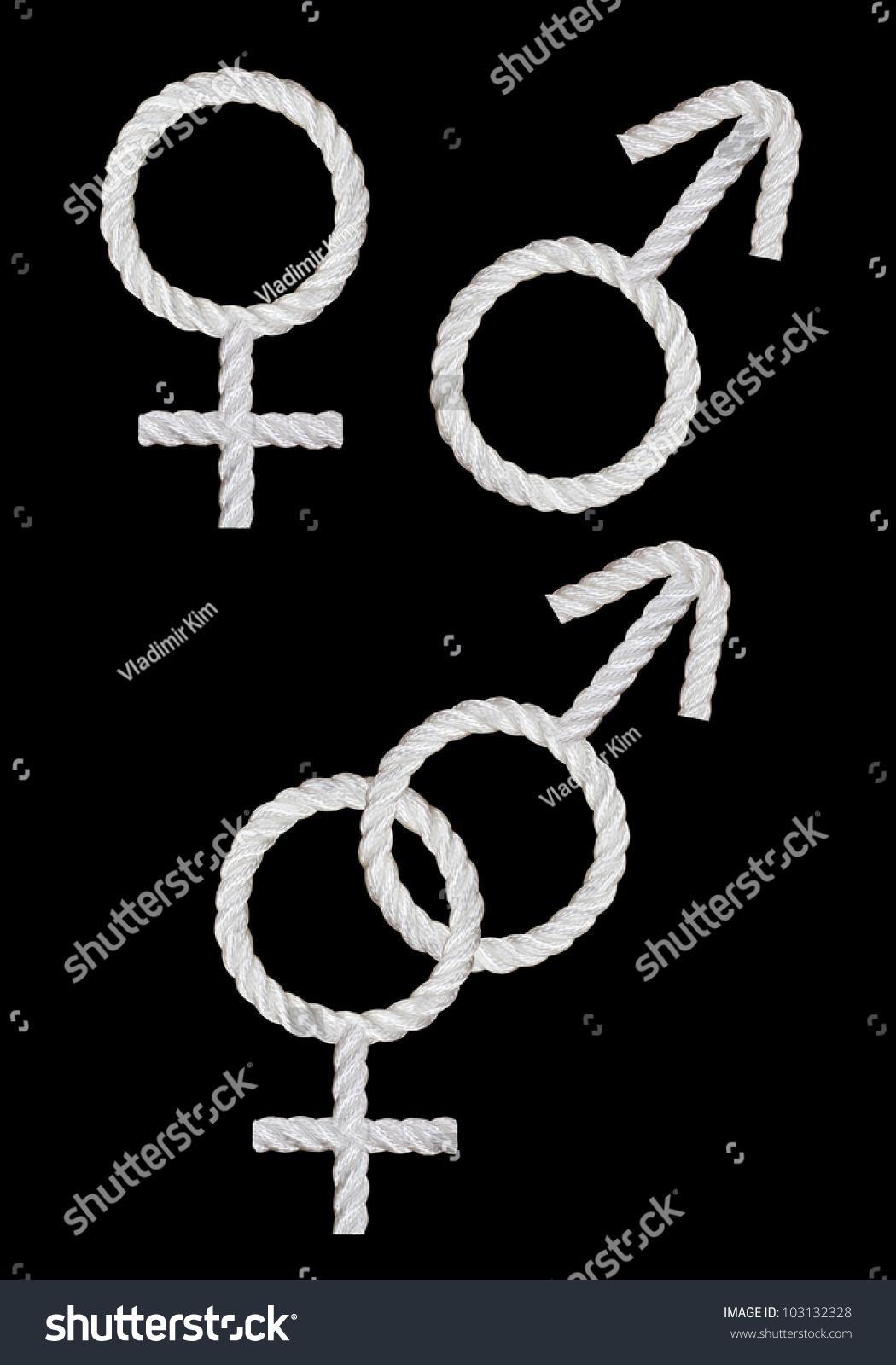 Female male symbols made white rope stock photo 103132328 female and male symbols made from the white rope biocorpaavc Gallery