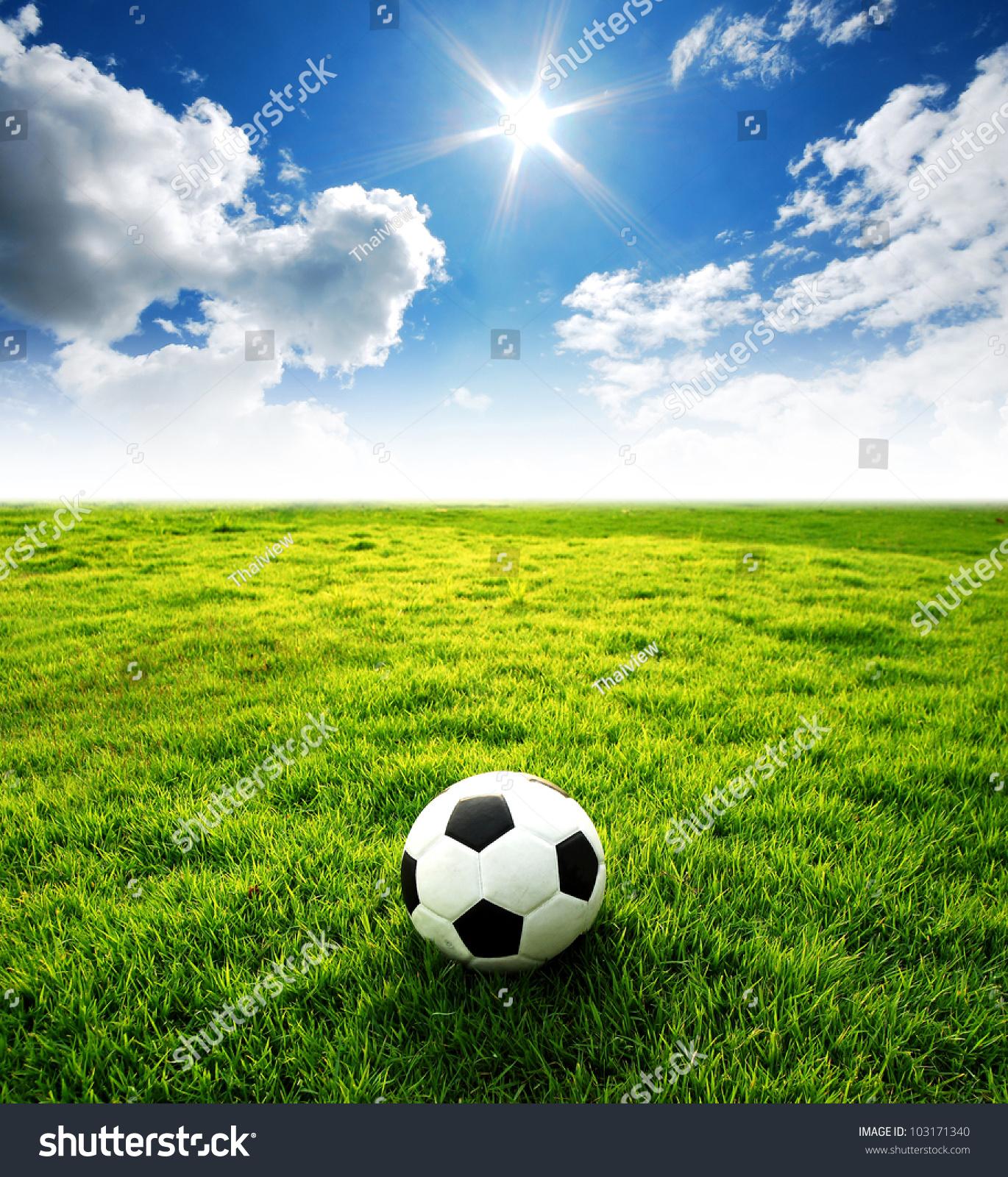 Soccer Stadium Design Html Autos Weblog