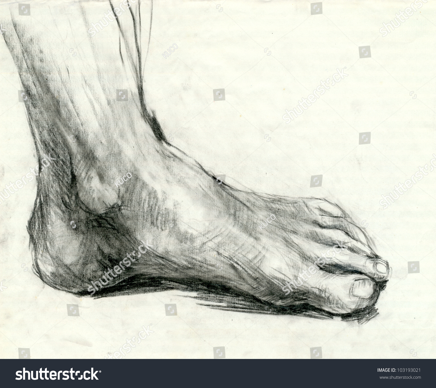 Hand Drawing Picture Foot Sole Mixed Stock Illustration ...