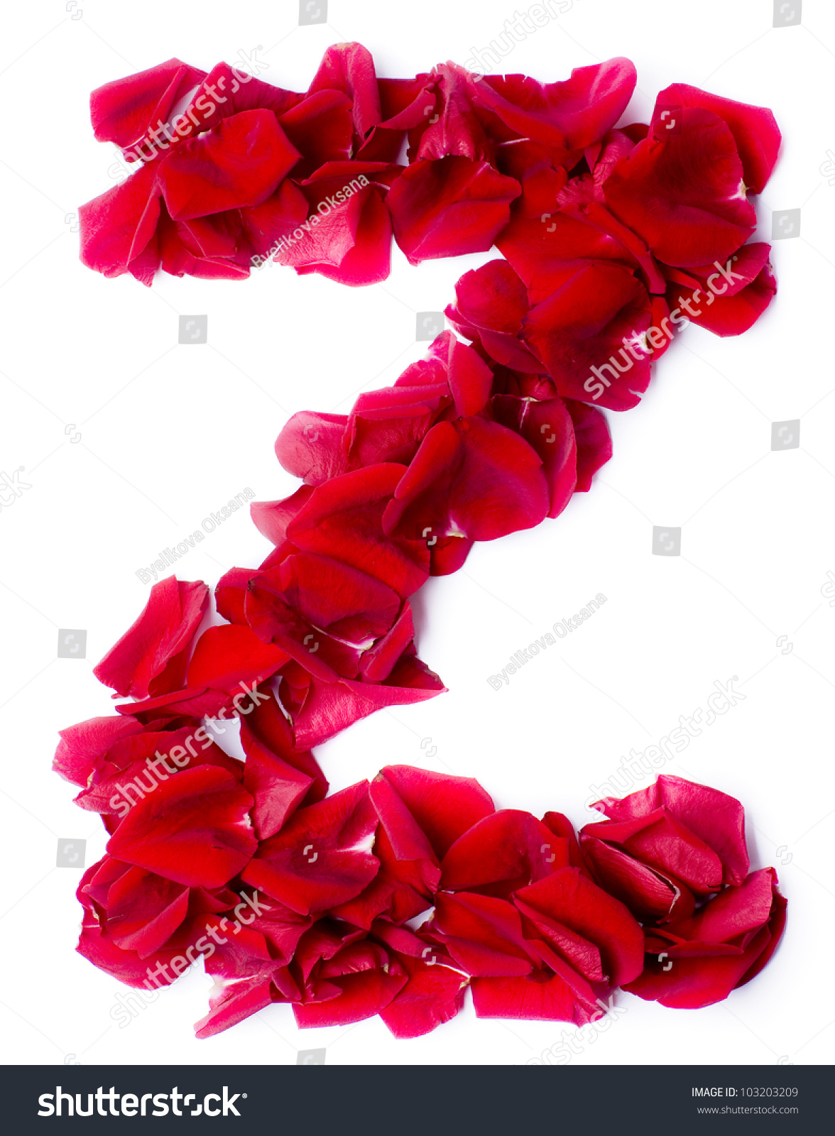 Alphabet Z Made From Red Petals Rose Stock Photo 103203209 ...