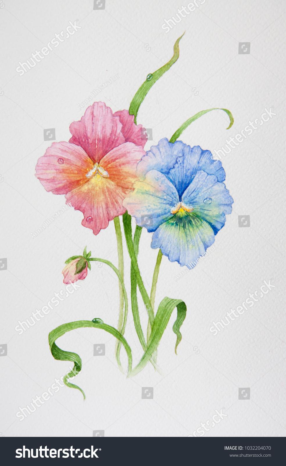 Spring Summer Flowers Pansies Leaves Irises Stock Illustration