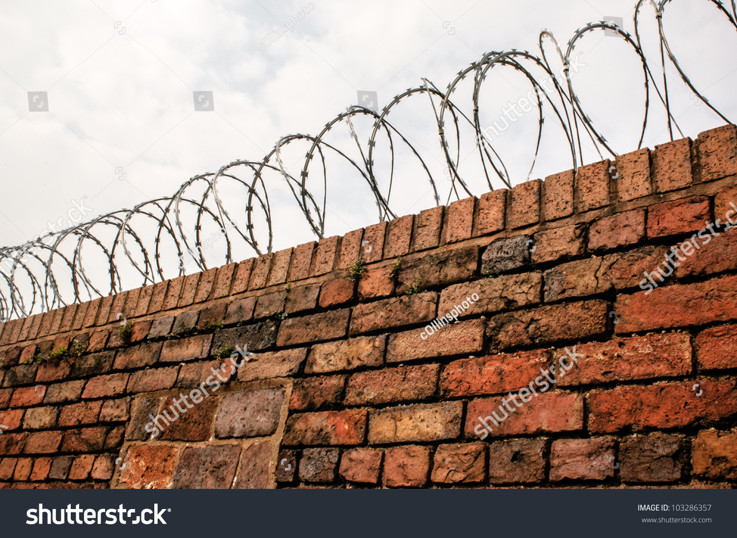 Barbed Wire Wall : Barbed wire coil mounted on top stock photo
