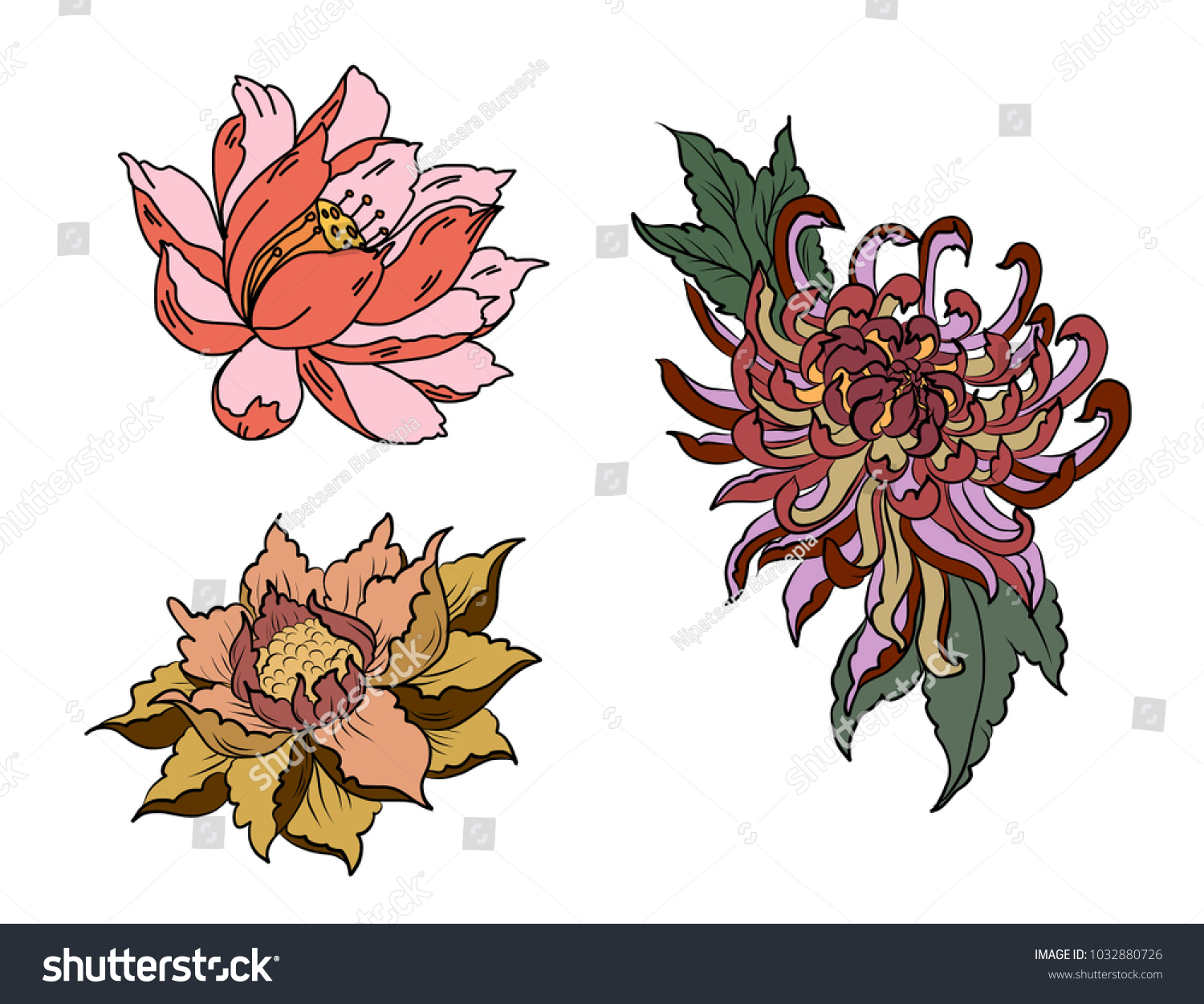 Hand Drawn Peony Flower Lotus Chrysanthemum Flower Stock Vector